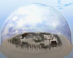 Snow Globe!
