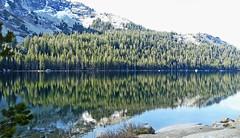 Yosemite Reflection 5-15