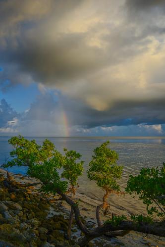 ocean sea sky beach clouds sunrise coast us rainbow sand unitedstates florida bushes bradenton landscapephotography desotomemorial manateecounty sonyalpha