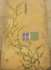 Vine:  A mural in Tavernes, Var, Provence