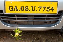 Rejestracja samochodowa z Goa