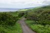 Kula, Maui Hawaii by Provinciana Itinerante