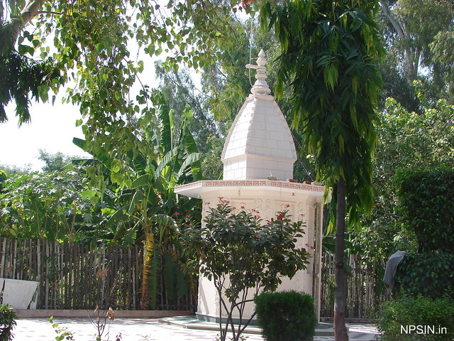 Green View of Shri Hanuman Mandir