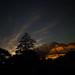 Watchman Stars - Zion National Park by Gary Breashears