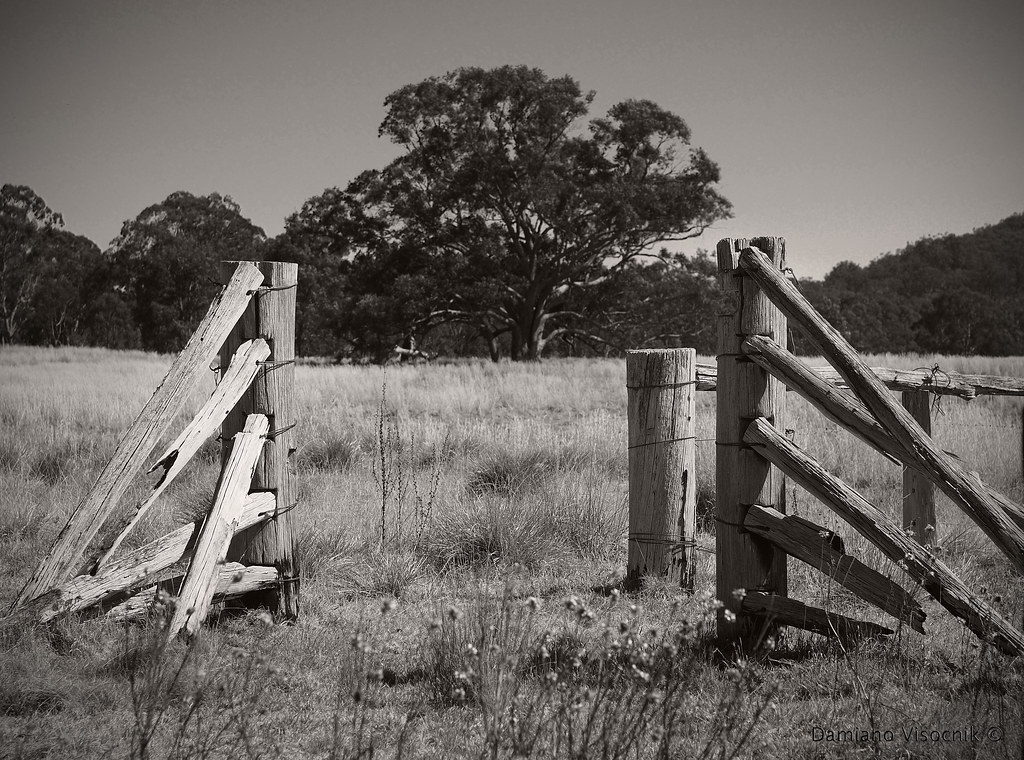 old cattle yards_2_c