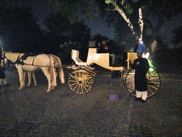 1. Horse Carriage