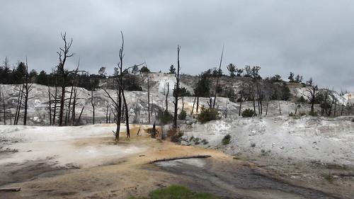 Yellowstone (6 et 7 Juillet 2015)