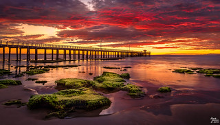 Point Lonsdale Pier at Sunrise