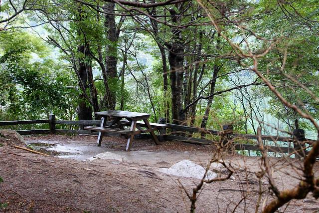 parque-florestal3