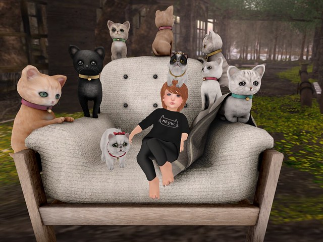 Meow! Crew Neck Sweater Outfit Maple TD Clothing