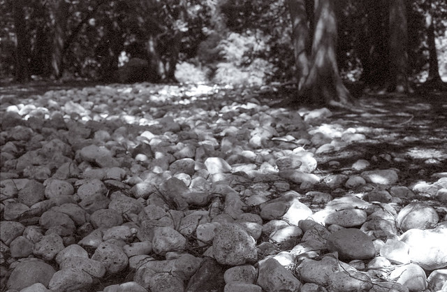 River of Stones
