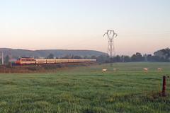 Train 24581 arrive à Réding - Photo of Kirrberg