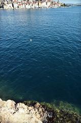 On the cliff / Kaljul