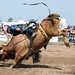 2015 Grand River Rodeo