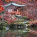 Kyoto 京都 by Travelscope游摄