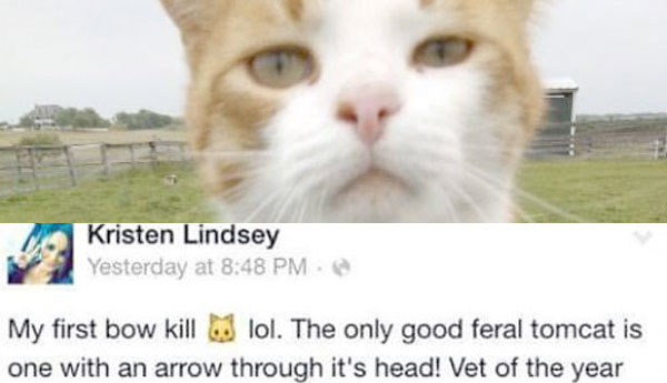 vet-license-revoked-bow-kill