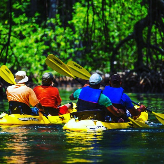 Kayaking in the Nicaraguan mangroves with www.greenpathways.com