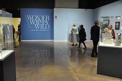 Wonder, Whimsy, Wild: Member Opening