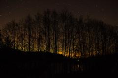 Aurora Borealis - December 2015 - 6