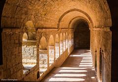 Abbaye du Thoronet Août 2014