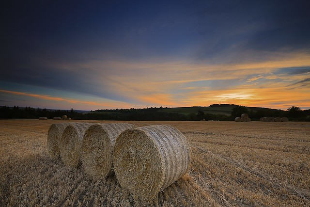 sunrise strawbales