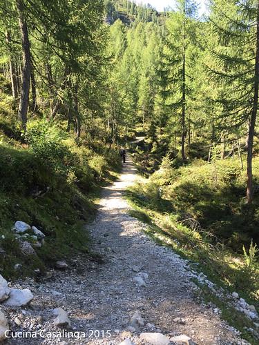 Bad Moos Rotwand Weg 1