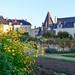 Fontevraud l'Abbaye Royale by ulterior epicure