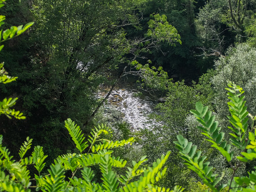 montenegro черногория водоем kolašin