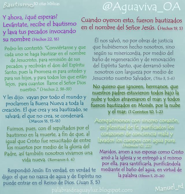 10 citas bíblicas sobre el Bautismo