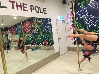 Pole Study