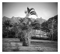 Pico do Frade retratado do Hotel do Bosque.
