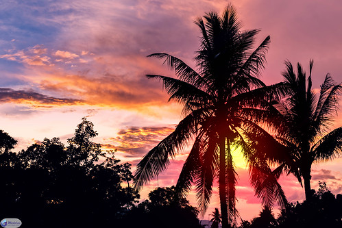 sunset asia coconuttree ph bicol thephilippines albay tiwi filipijnen libjo