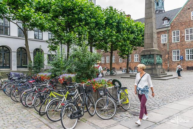 Bicicletas en Copenhagen