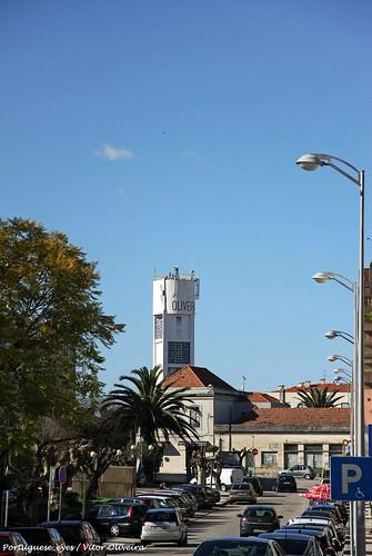 Oliveira do Bairro - Portugal