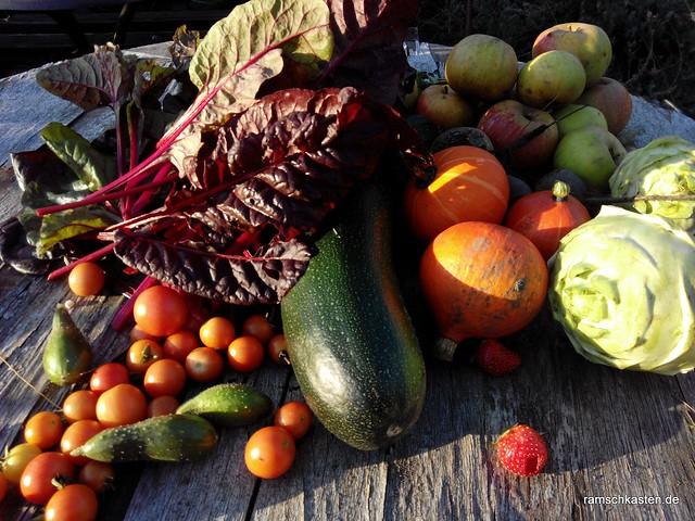 Gartenernte im Herbst - Impressionen