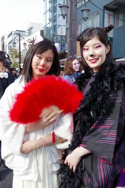 Cat's Halloween Parade in Kagurazaka 2015 19