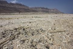 Dead Sea & Jordan Rift Valley 028