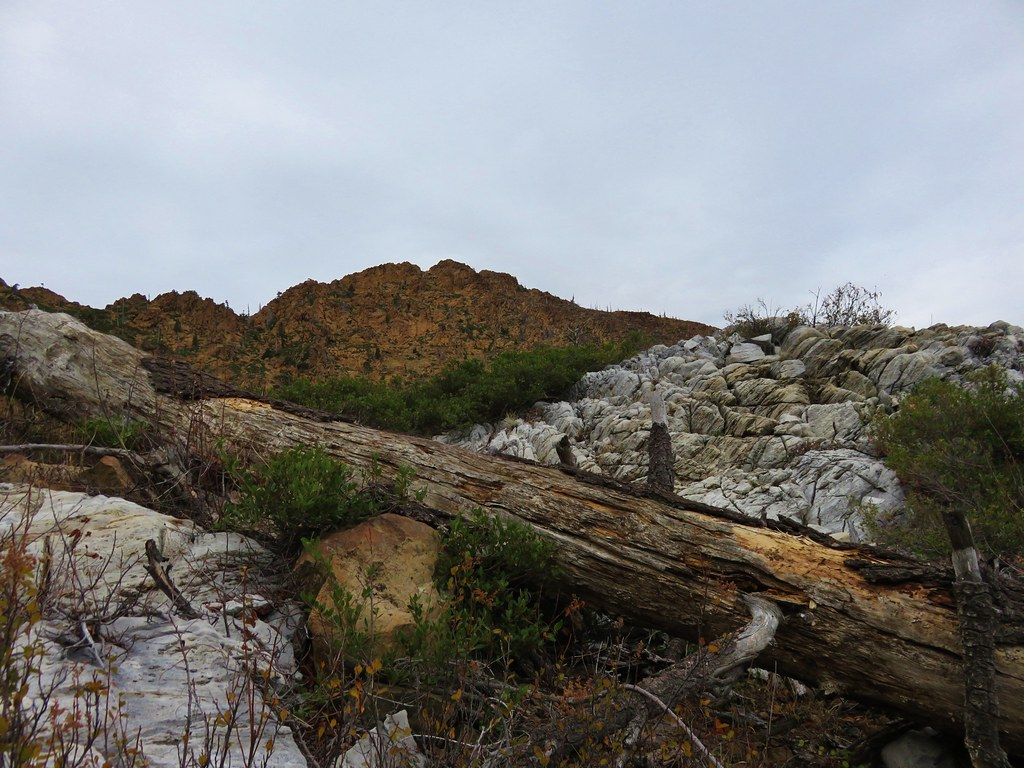 Marble outcrop below Kangaroo Mountain