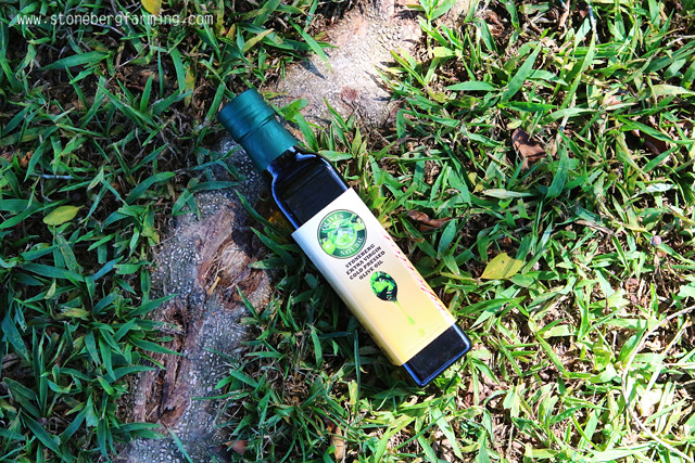 快速了解「維生素E-Vitamin E」!含有維生素E-Vitamin E的橄欖油~