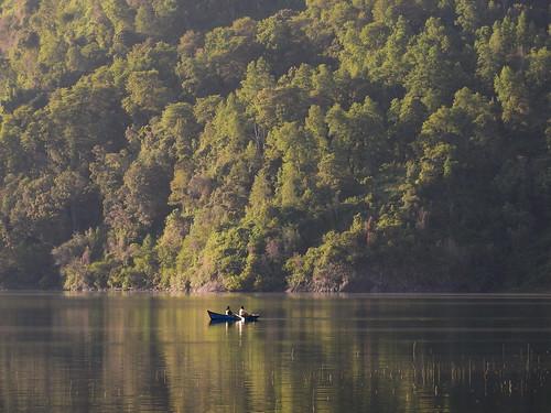 chile bosque andes bote chilecentral lagomaihue regióndelosríos