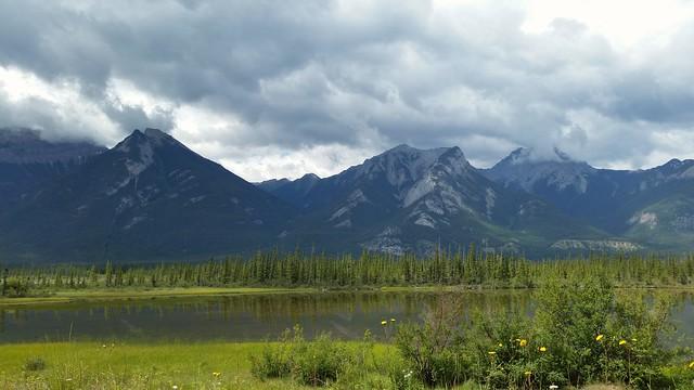 Jasper National Park Roadside