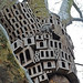 Squirrel Village by Dave Gorman