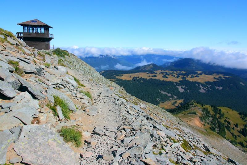 IMG_8420 Mount Fremont Lookout, Mount Rainier National Park