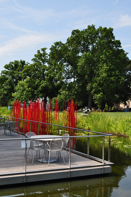 Red Reeds, Dale Chihuly  (1)