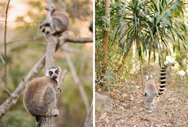 RYALE_Madagascar_Blog2_039