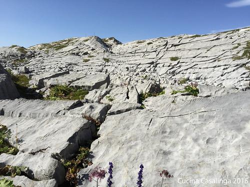 Lech Geoweg mitten im Plattenkalk