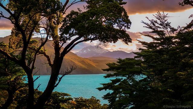 Photo:Trough the trees of Patagonia By Doug Scortegagna