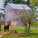 Small photo of Horse on Amish Farm