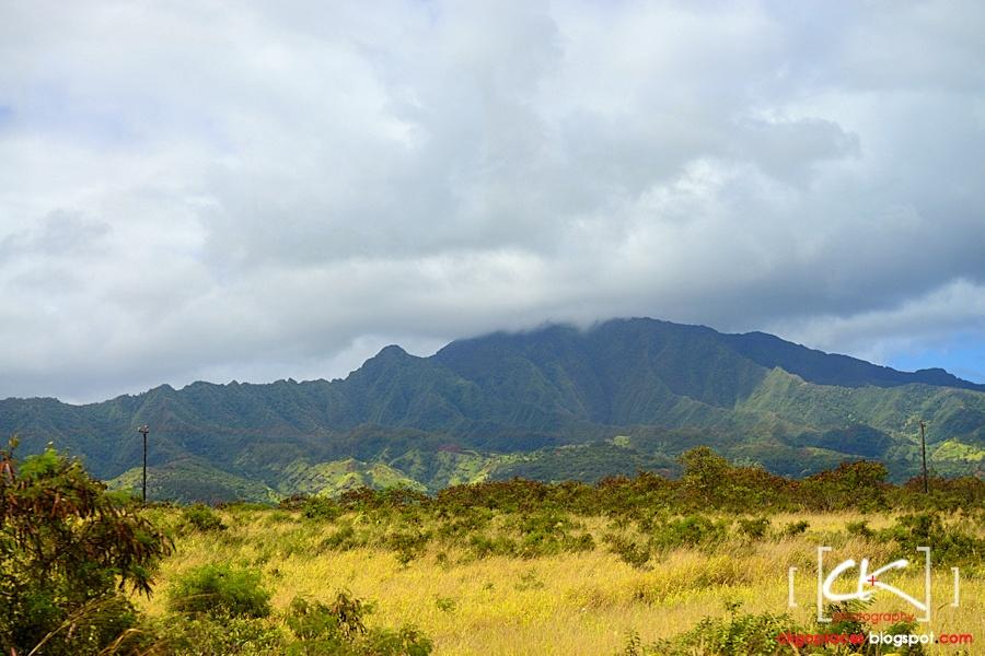 Hawaii_0165