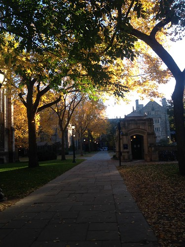 Yale and the Greats